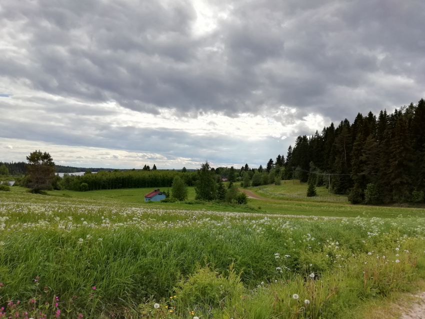 Uuden ajan maaseutuyrittäjät -webinaari